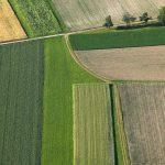 Schadet ökologischer Anbau dem Klima?
