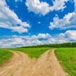 """Wahltool """"Agrar-O-Mat"""" soll Landwirten bei der Europawahl helfen"""