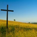 Streit in der Agrarpolitik